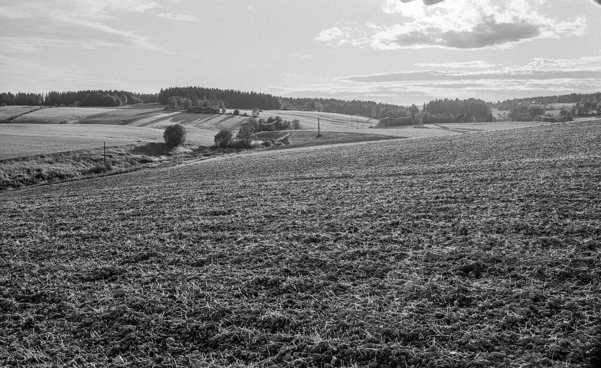 Naturbilder fra Kongeveien og Årungen i Nordby i Ås.