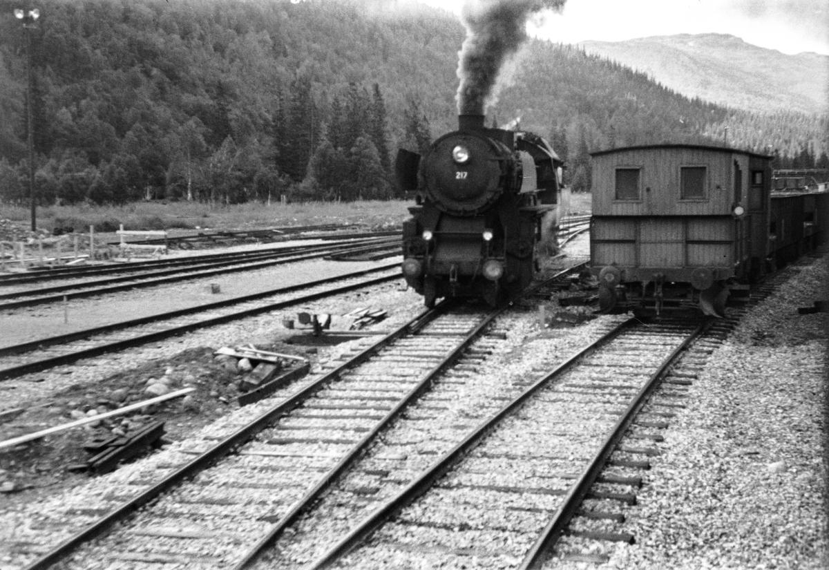 Damplokomotiv type 63a nr. 217 på Dunderland stasjon.