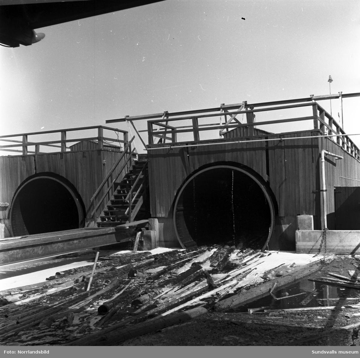 Bildserie från Östrandsfabriken, bland annat barktrummor och transportband.