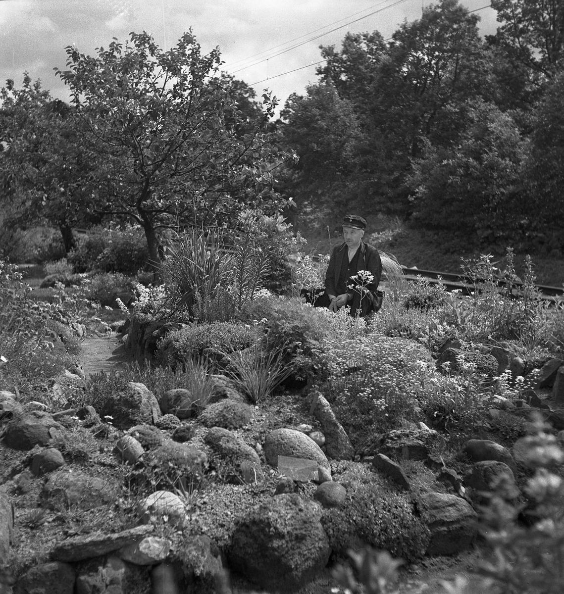 Trädgårdsanläggning, banvakt Larsson