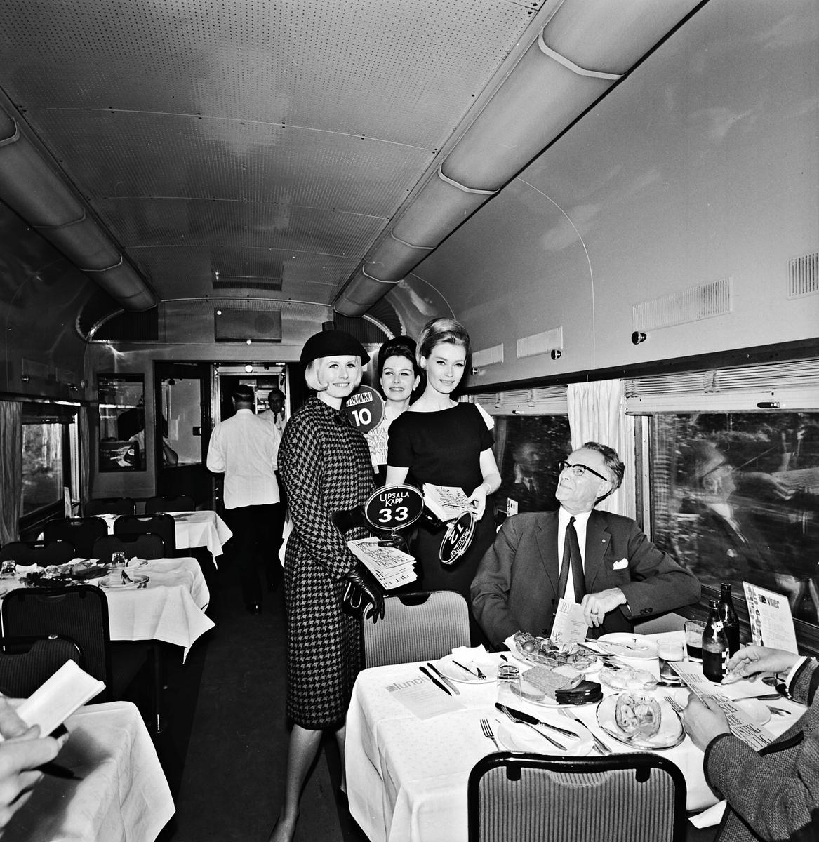 Mannekänger i tåg