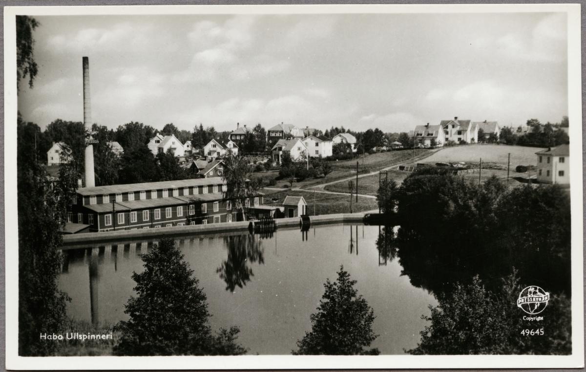 Ullspinneriet i Habo med anor från 1882. Dess dominerande produktion var filttillverkning.