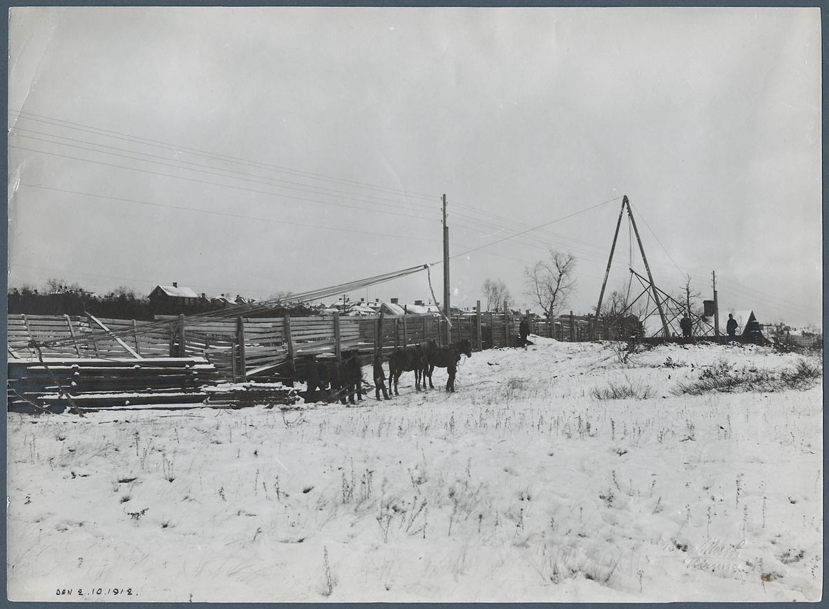 Vinterbild med arbetshästar för uppställning av kraftstolpe.