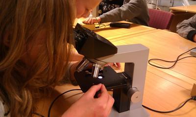 gjennom-mikroskopet-foto-Hege-Hauge-Tofte.jpg
