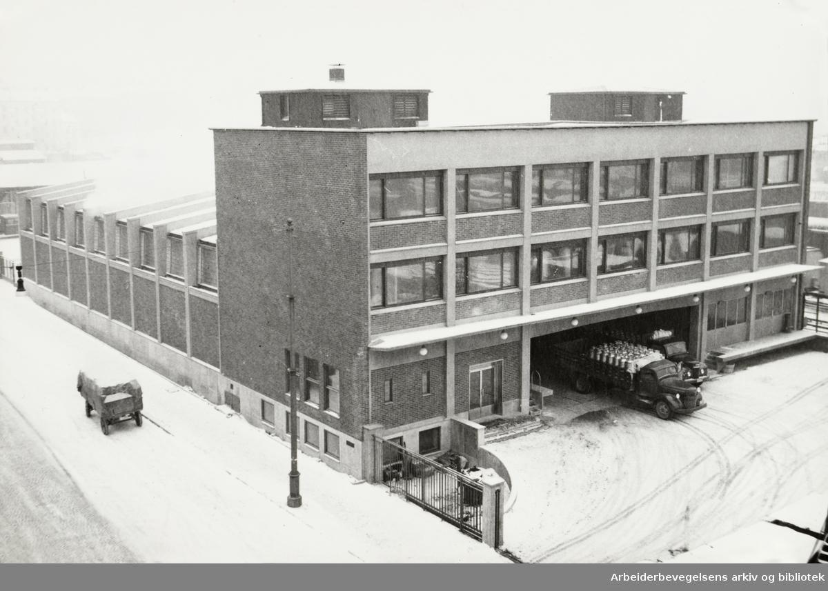 Fellesmeieriet. Mars 1953