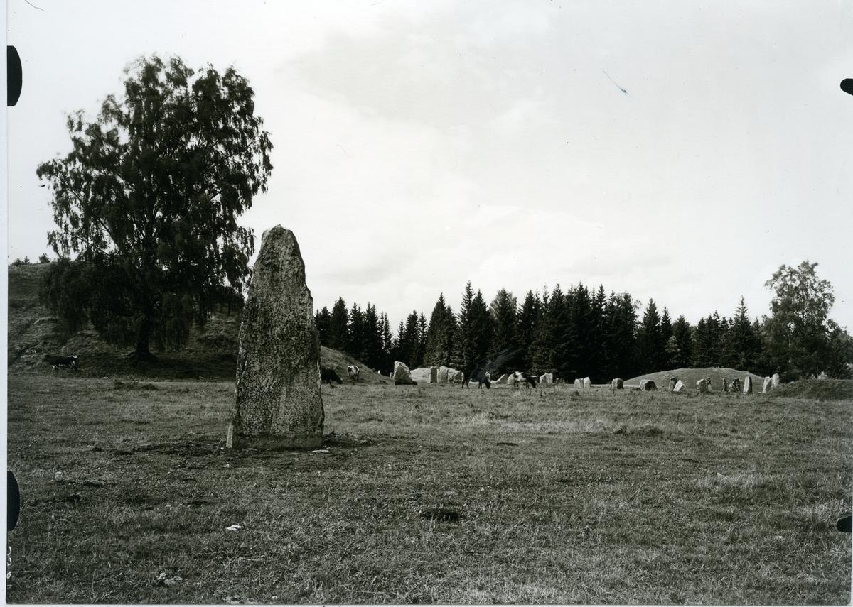 Badelunda sn, Anundshögsområdet, Långby. Runsten, gravhög och skeppssättning, 1933.