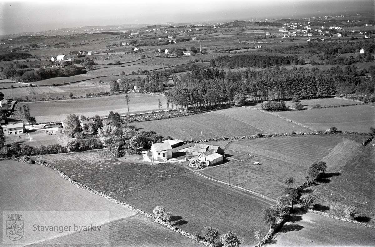 Stavanger ytre. Jåttå. Mot S.V...Gårdsbruket til Karel Kristiansen. Asserskogen bak til høyre.