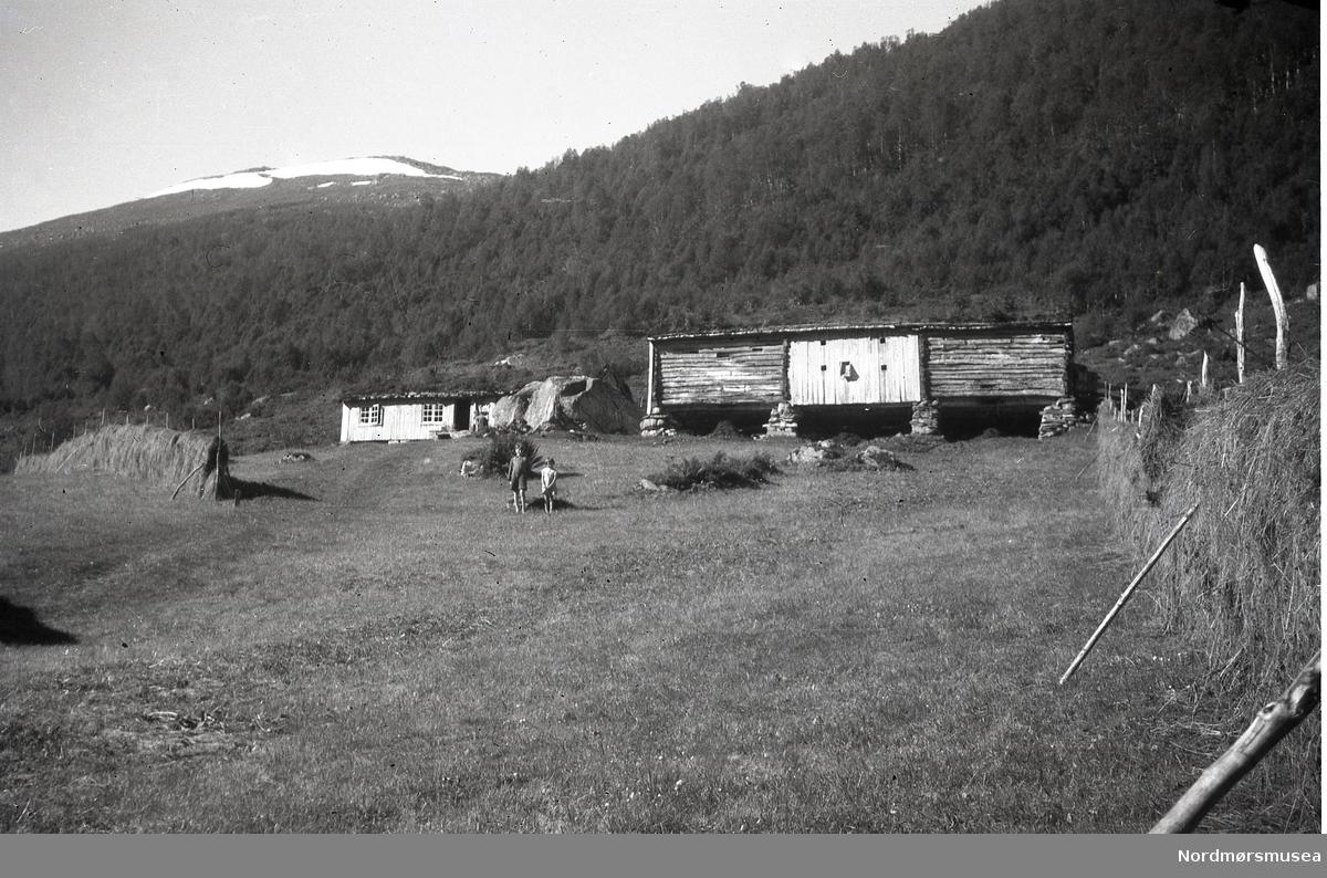 Seter med fjøs. Hesjer. Ein gut og ei jente står midt i bildet. Snø på fjellet i bakgrunnen.