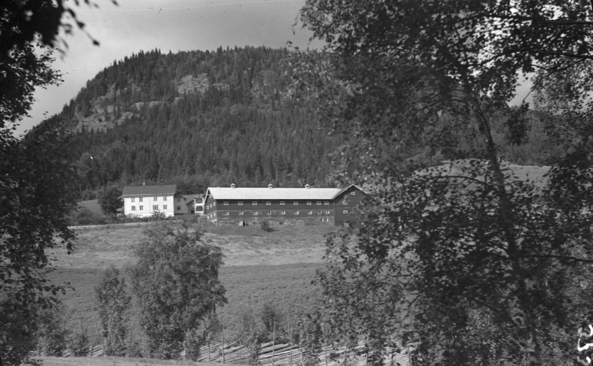 Thallaug (Tålå) gård