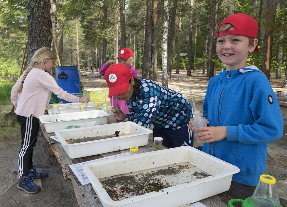 Barn som deltar på opplegg med Naturskolen ved Norsk skogmuseum. (Foto/Photo)