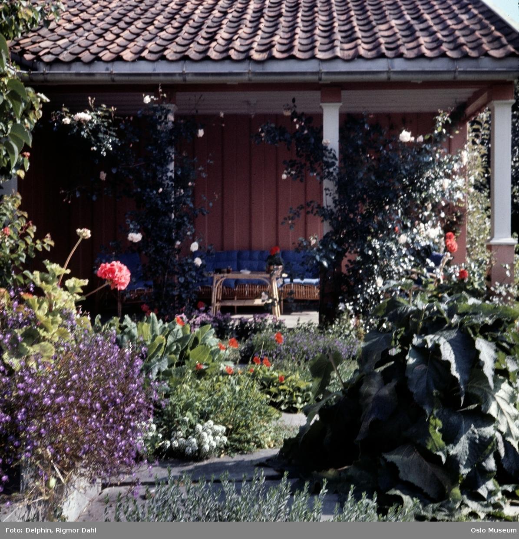 villa, terrasse, hage