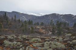 Asbjørn Haga, Marit Taksdal, Karl Marting Mattingsdal, Øyvin
