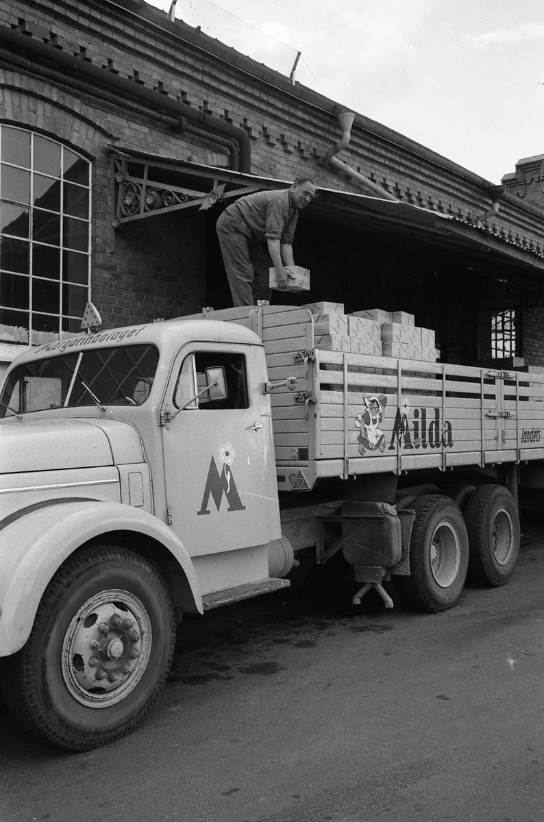 Arboga Margarinfabrik och en lastbil med texten Milda. Holger Strömberg arbetar på flaket, med att stapla margarinpaket. Detta är den sista utlastningen från Arboga Margarinfabrik. Trots att fabriken gick för fullt och nya paketeringsmaskiner just installerats, bestämde ledningen att fabriken måste läggas ner. Anledningen var att konkurrensen ökat och att fabrikens placering, inne i landet, gjorde det dyrt att frakta råvaror. Fabriken lades ner 30 september 1960. Läs om Arboga Margarinfabrik: Arboga Minnes årsbok 1978 Reinhold Carlssons bok Arboga objektivt sett