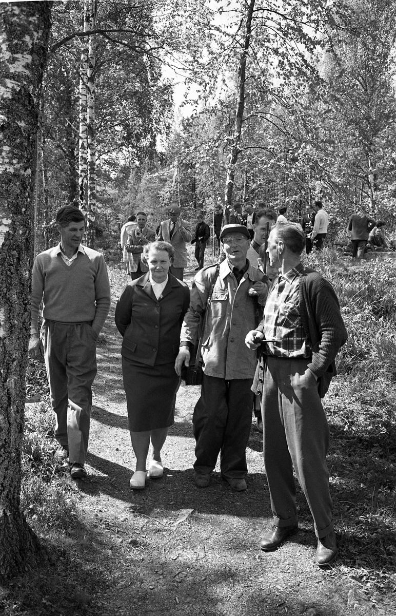 AT-skytte. Flera män och en kvinna promenerar på en stig i skogen. En man har ett gevär på axeln. (AT kan betyda Arboga Tidning)
