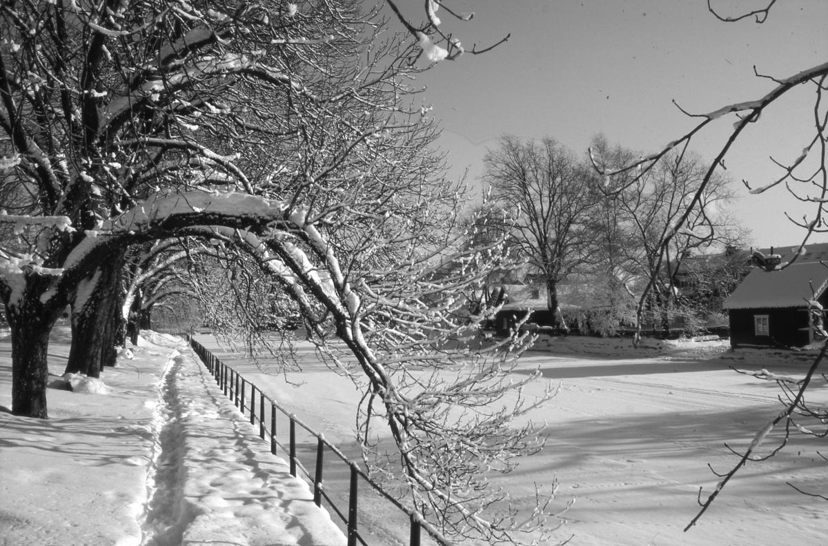 Åpromenaden intill Strandvägen. Vinter och snö. Det är is på Arbogaån.