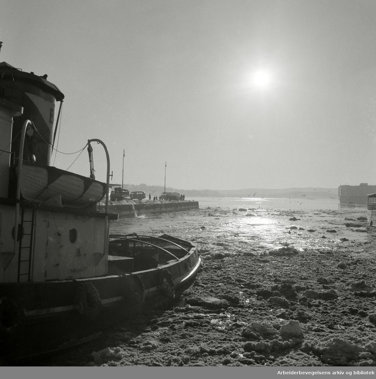 Vinter i Oslo. Isbryter i Oslo havn. Mars 1954.