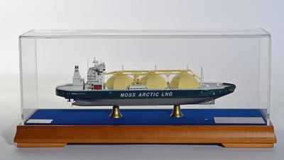 Moss-arcticW.jpg. Foto/Photo