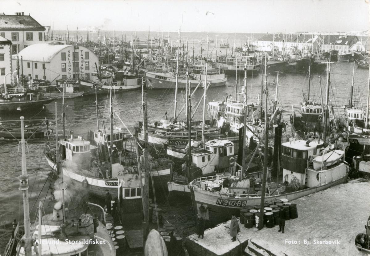 Oversiktsbilde av havnebassenget i Ålesund med flere fiskebåter liggende i havn. Fem av båtene viser navnene N.210.BØ, M.10 3.G, F.40.M, M.79.SA og T.70.LK.