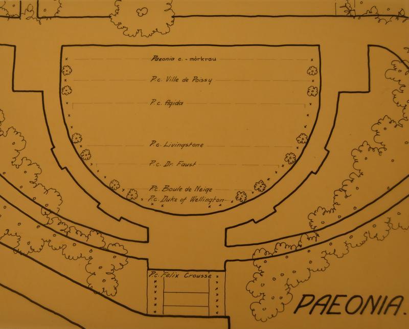 Beplantningsplanen fra 1930. Foto: MiA. (Foto/Photo)