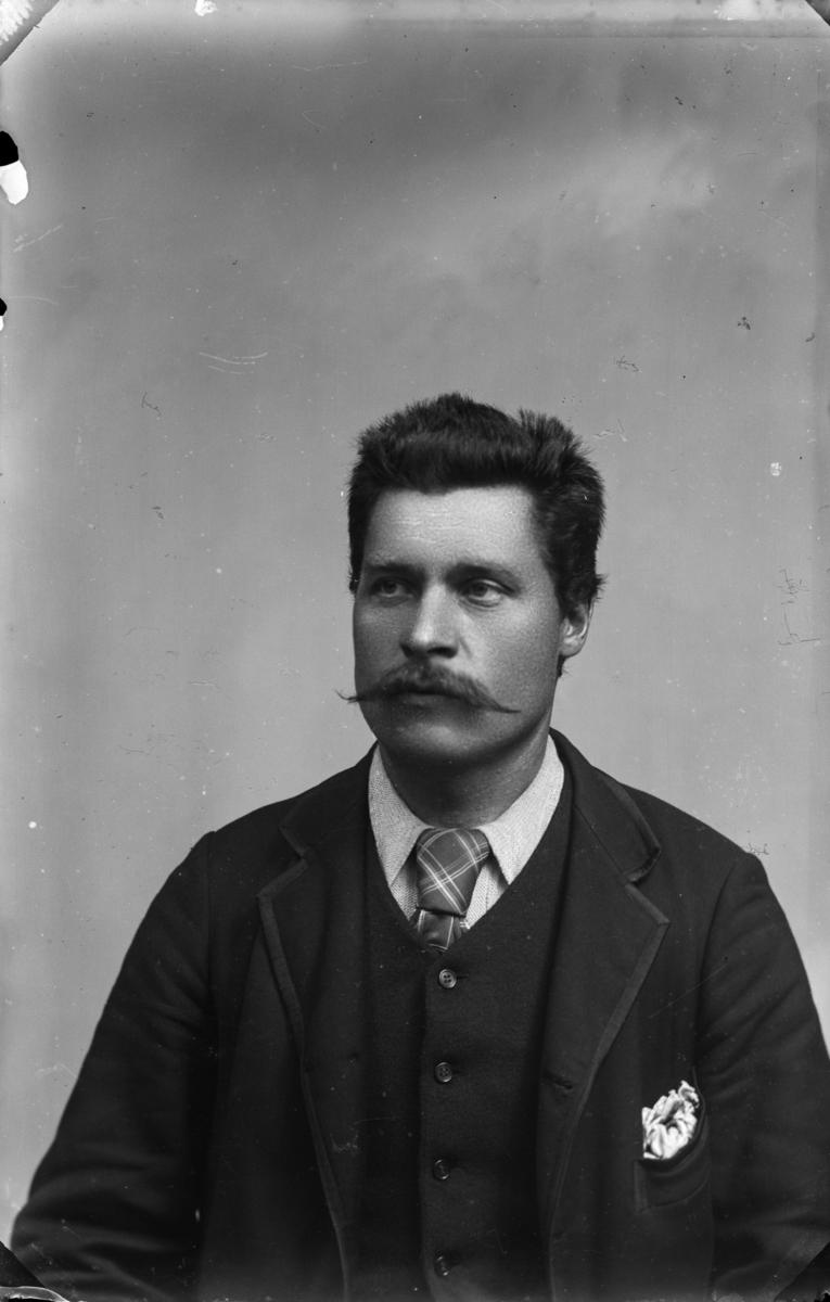 Portrett av mann med mørkt hår og stor bart, kledd i lys sjorte, slips, vest og mørk jakke