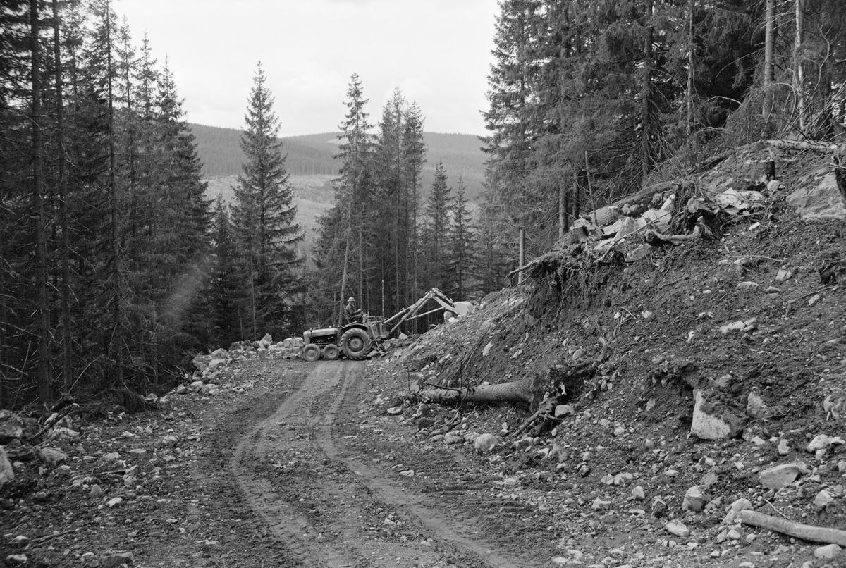 Bygging av skogsbilveg i Hurdal i Akershus, antakelig i 1962. Fotografiet er tatt nedover langs vegbanen i skrånende terreng omgitt av granskog. Et stykke nede i vegen ser vi en traktorgravemaskin som sto på tvers av vegbanen, mens maskinføreren arbeidet med å forme skjæringa på oversida av vegen. Under planlegginga av skogsbilveger var det et viktig premiss at anleggsomkostningene skulle vurderes i forhold til antatt transportgevinst, som igjen var avhengig av avvirkningskvantumet i vegenes nærområder i overskuelig framtid. Det var åpenbart at anleggskostnadene ville variere etter hvilken kvalitet vegen skulle få, etter hvordan terrenget var og etter hva slags mark den skulle legges på. Billigst var det å legge vegene der det var bæredyktige løsmasser. Morenegrunn, som det finnes mye av i norske skoger, ble ansett for å være ideell, for på slikt underlag kunne en få et stabilt veglegeme ved å bruke stedegne masser. Morenemassenes stabilitet innebar også at man kunne ha ganske bratte skjæringer uten overhengende fare for at fuktmettede ovenforliggende masser raste inn i vegbanen når snøsmeltinga og teleløsningen om våren.