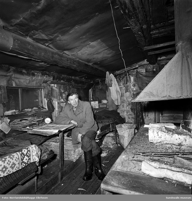 Tidigare skidlöparstjärnan Lars-Teodor Jonsson i sin bostad, en enslig skogskoja i Lill-Allvattnet, Strömsund, där han levde till nära 90 års ålder. Stugan har senare flyttats och finns bevarad på hembygdsgården i Strömsund. Reportagebilder för Expressen.