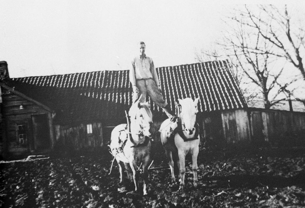 Den gamle heimen til Ommund O. Tunheim - første huset på Elisberget. Det var heimahus og uthus bygd i eitt. Huset sto først på Njå, vart så rive og sett opp på Elisberget omlag 1880. Det er nå (1990) rive. Olav Tunheim står på hestane Stjerne og Tunild.