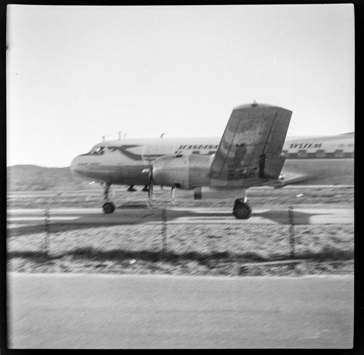 DC3-fly fra SAS, antakelig på Kjevik flyplass