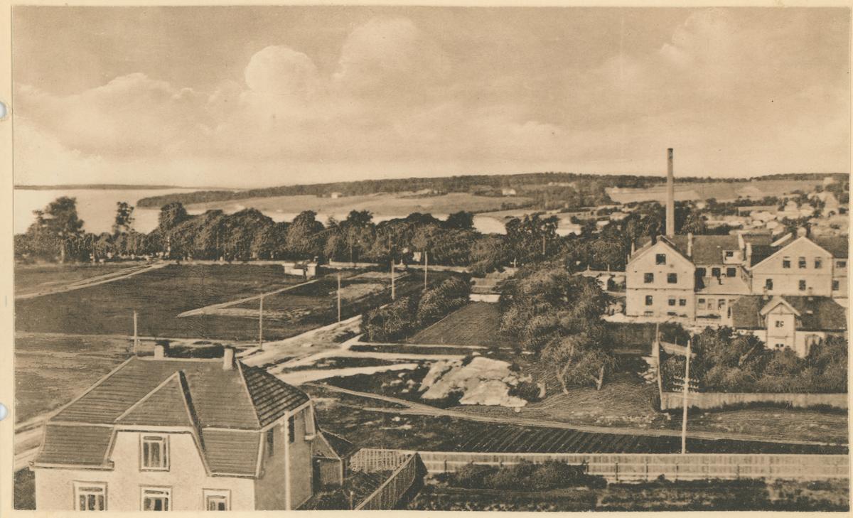 Utsikt mot Jeløy fra Scharremyrfjellet. Jeløy i bakgrunnen. T. h. Helly-Hansens fabrikk.