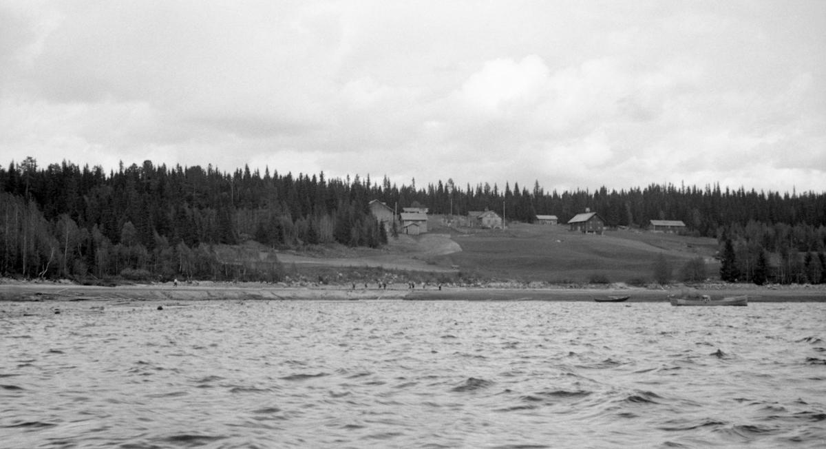 Fra Koievika ved Osensjøen sommeren 1941.  Fotografiet er tatt fra en båt på sjøen inn mot land.  Her skimtes en masse fløtere som arbeider med utislag av tømmer som er blitt liggende igjen langt oppe på strendene etter nedtapping av sjøen.  Til høyre i bildet ligger to båter, ei motorsnekke, som ble brukt som varpebåt, og en robåt.  I lia bakenfor ligger et par gardsbruk med jordveg omkranset av barskog.
