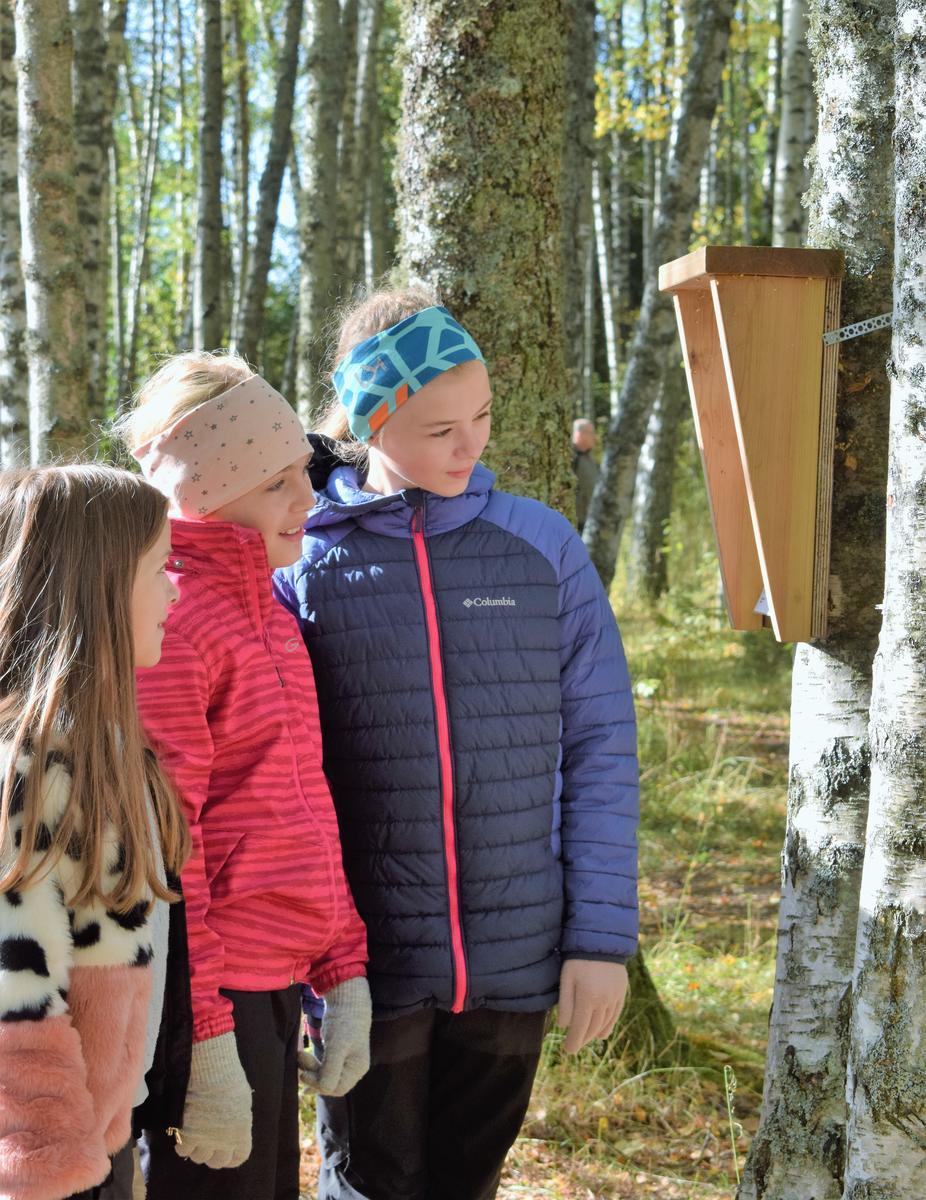 Foto av tre barn som leser natursti