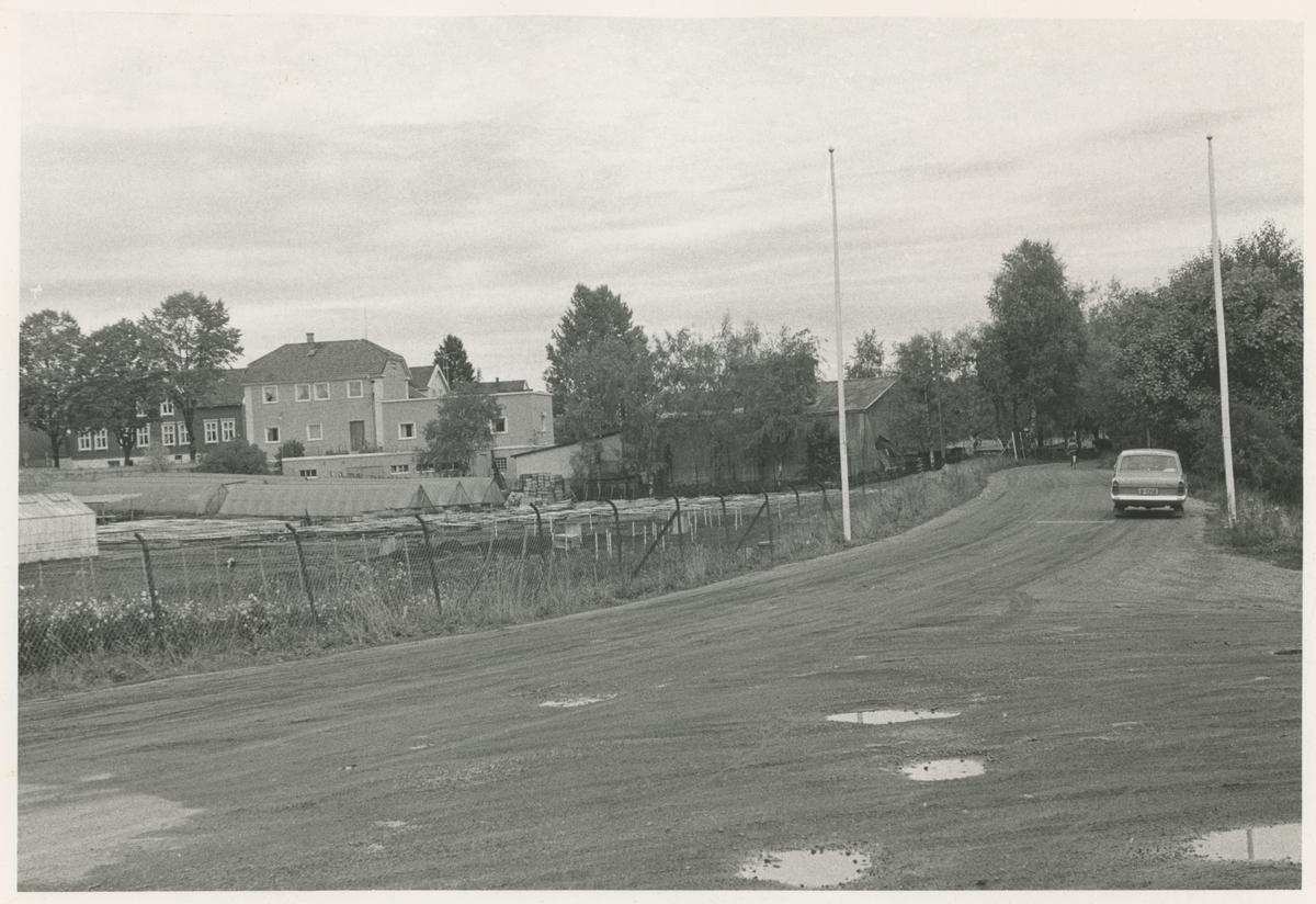 """Veien til Nesset (Nesparken).  Bilde 1: 1966. Gartneriet til høyre. I bakgrunnen: daværende Moss Sykehus og Høstegården.  Bilde 2-4: 1968. Gartneriet til venstre. Bilde 2 publisert i """"Moss som den var"""" (Jørgen Herman Vogt, 1970), s. 263."""