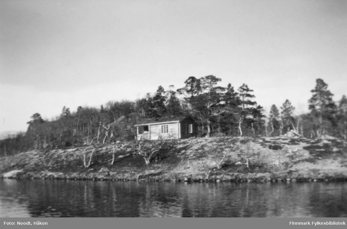 Skogvesenets hytte ved Stellingvann i Porsanger, 1938.