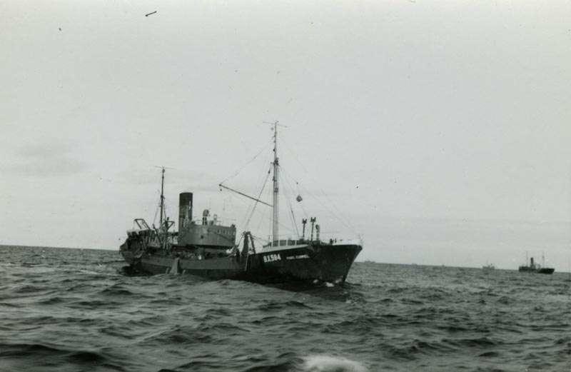 Fiskebåt BX594