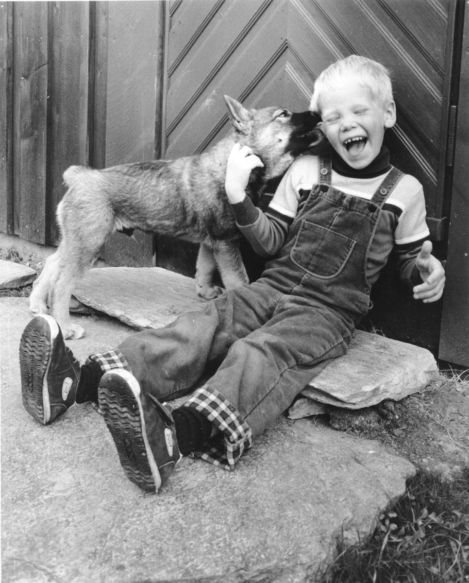 Liten gutt med elghunder - Anders Nordstad