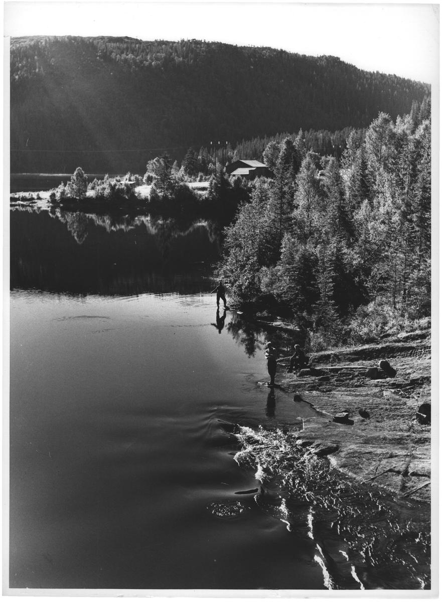 Fisking Krinsvatn i Åfjord. S. Tr.lag