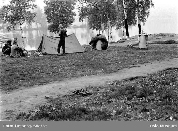 slette, mennesker, telt, camping, vann, skog