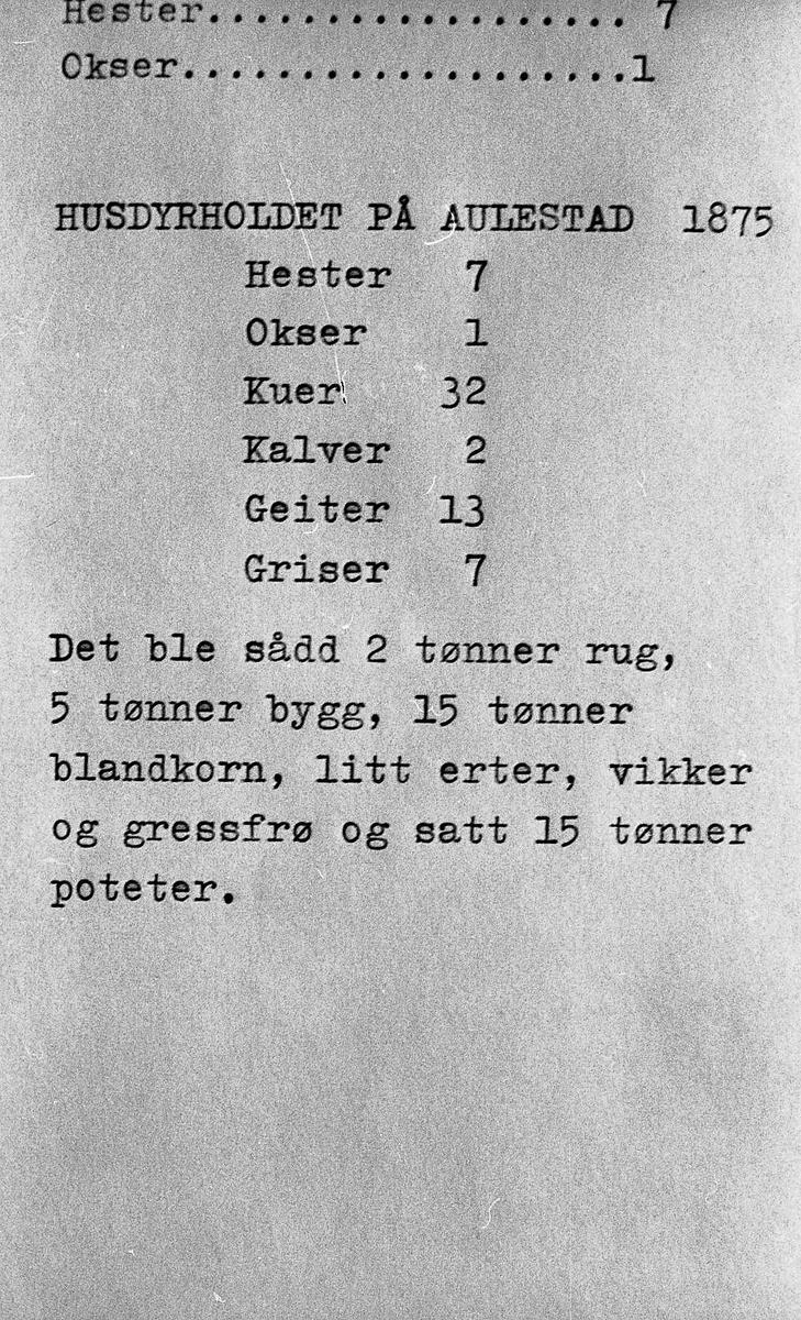 Husdyrholdet, Aulestad, 1875,
