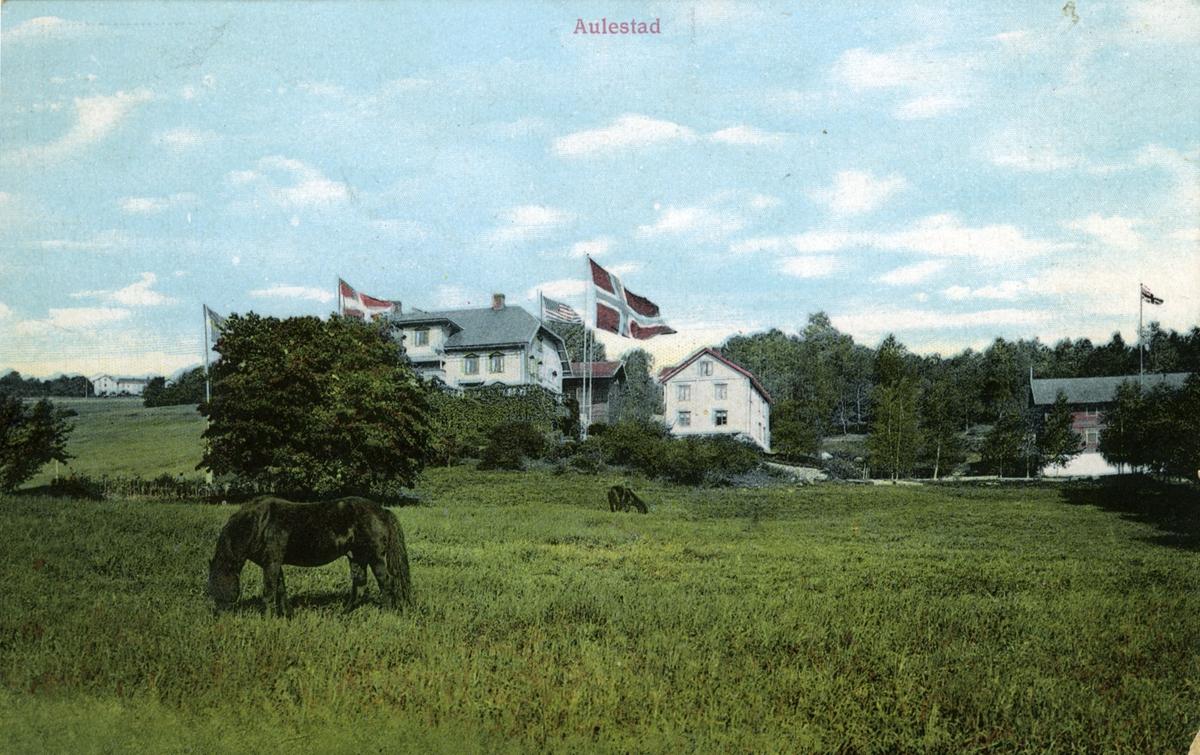 Aulestad, hest, flagg, postkort,