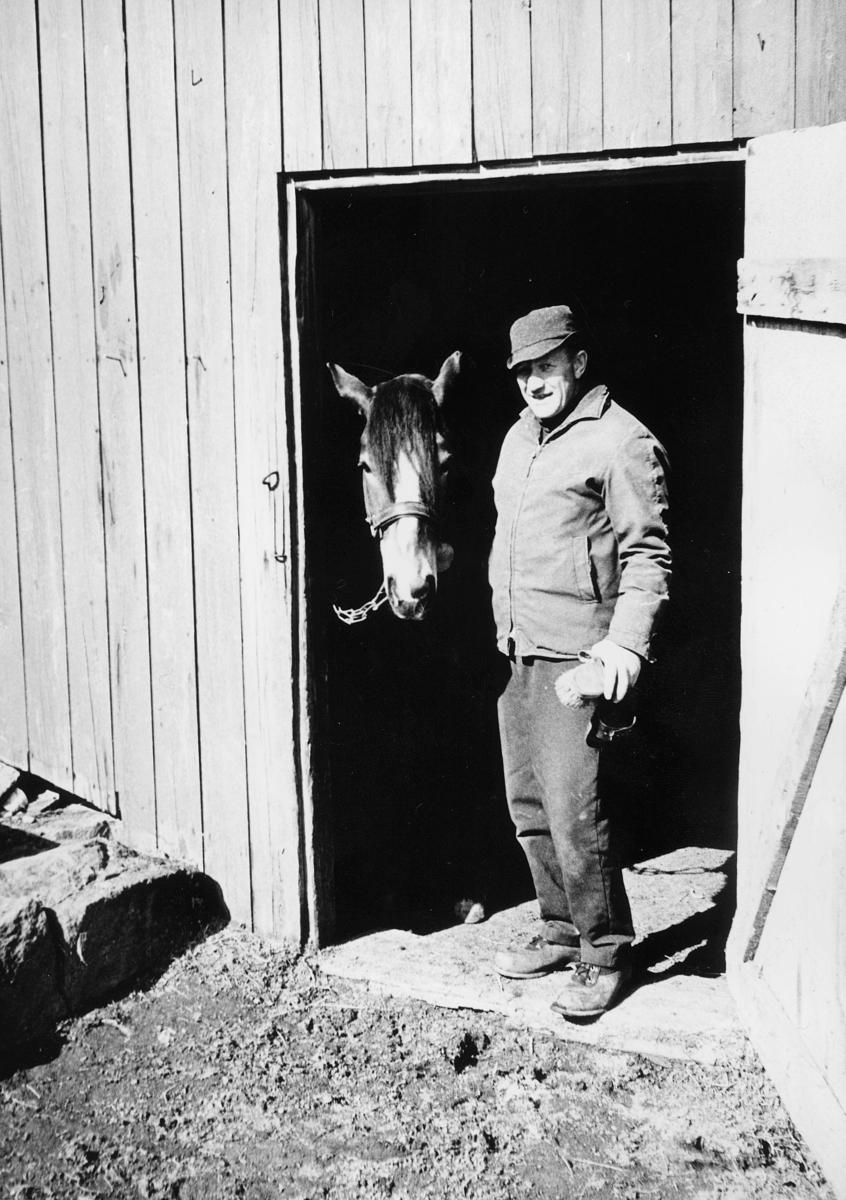 postskolen, Granavolden, 1972, 1 mann, 1 hest