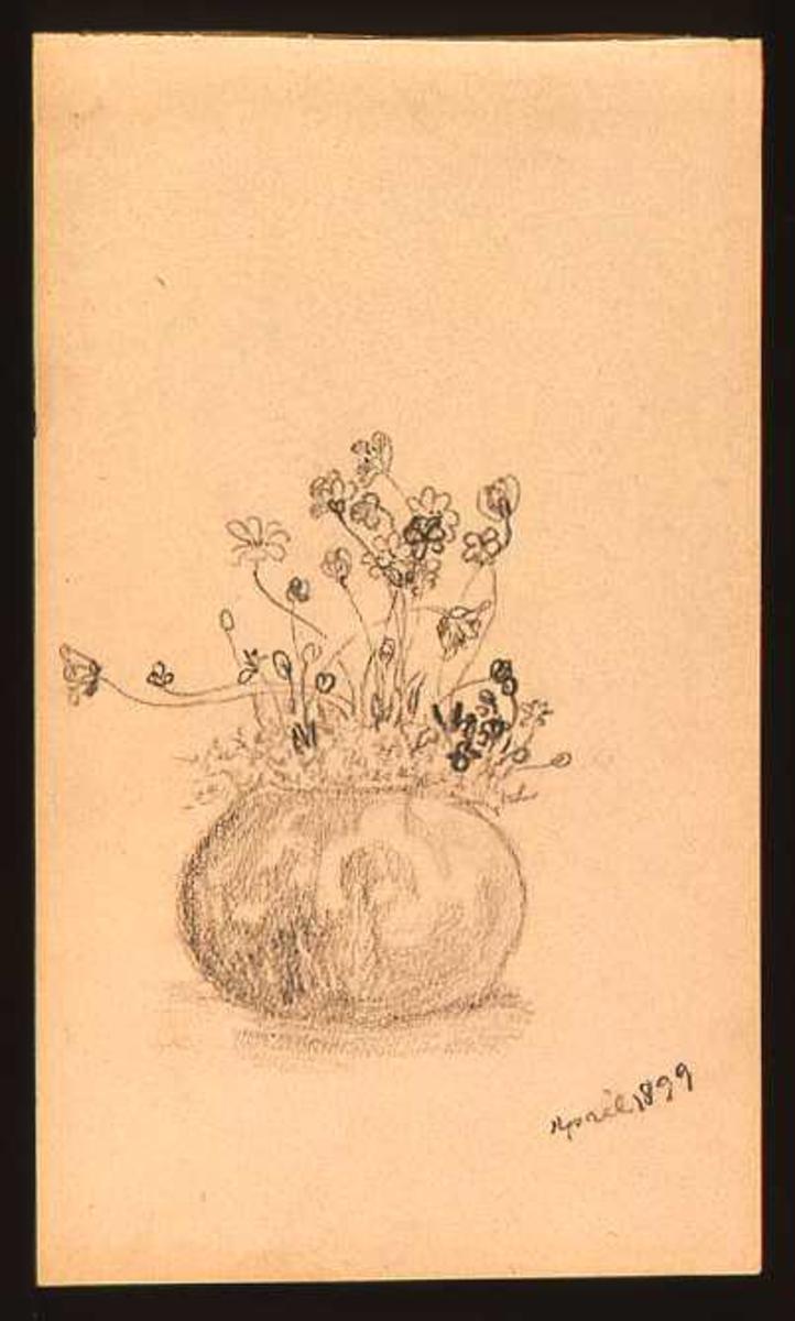 Krukke, blomster, tegning