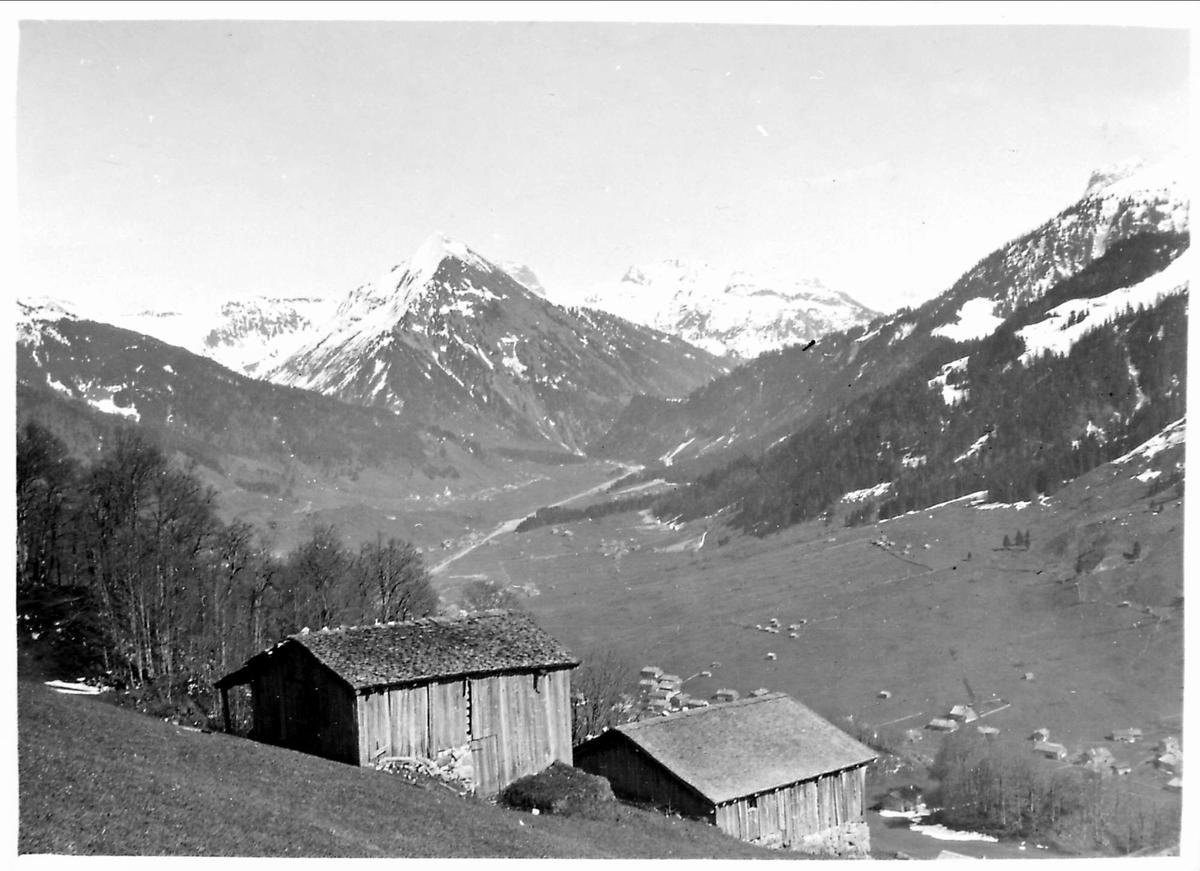 Landskap, fjell, hus