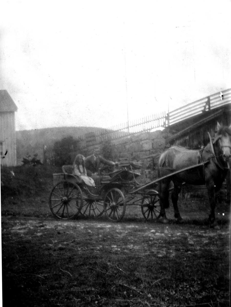Åmlibilder samlet av Åmli historielag Hest og trille