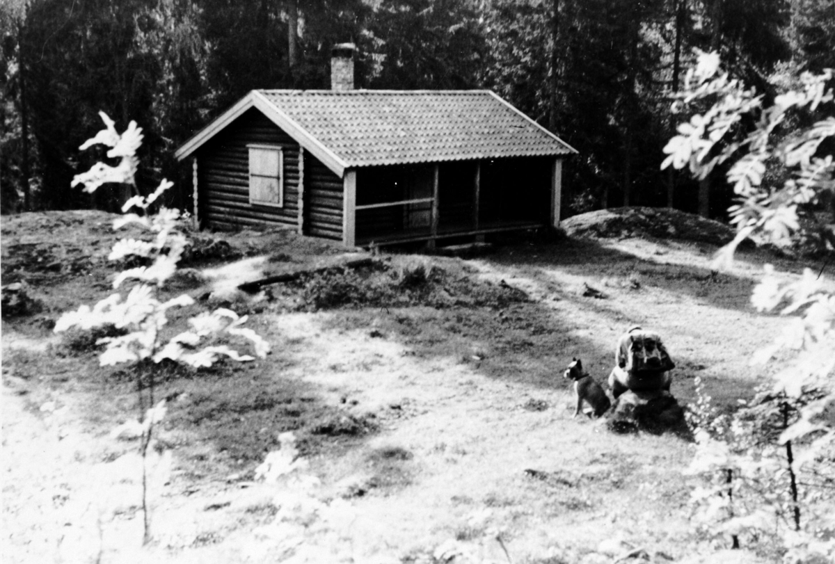 Reidar Hansen og Boxi ved Feiringsetra.