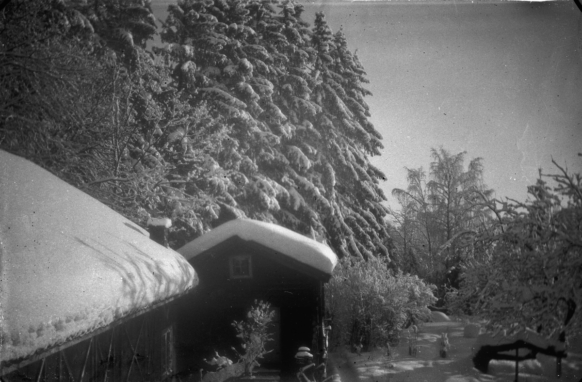 Vinterbilde