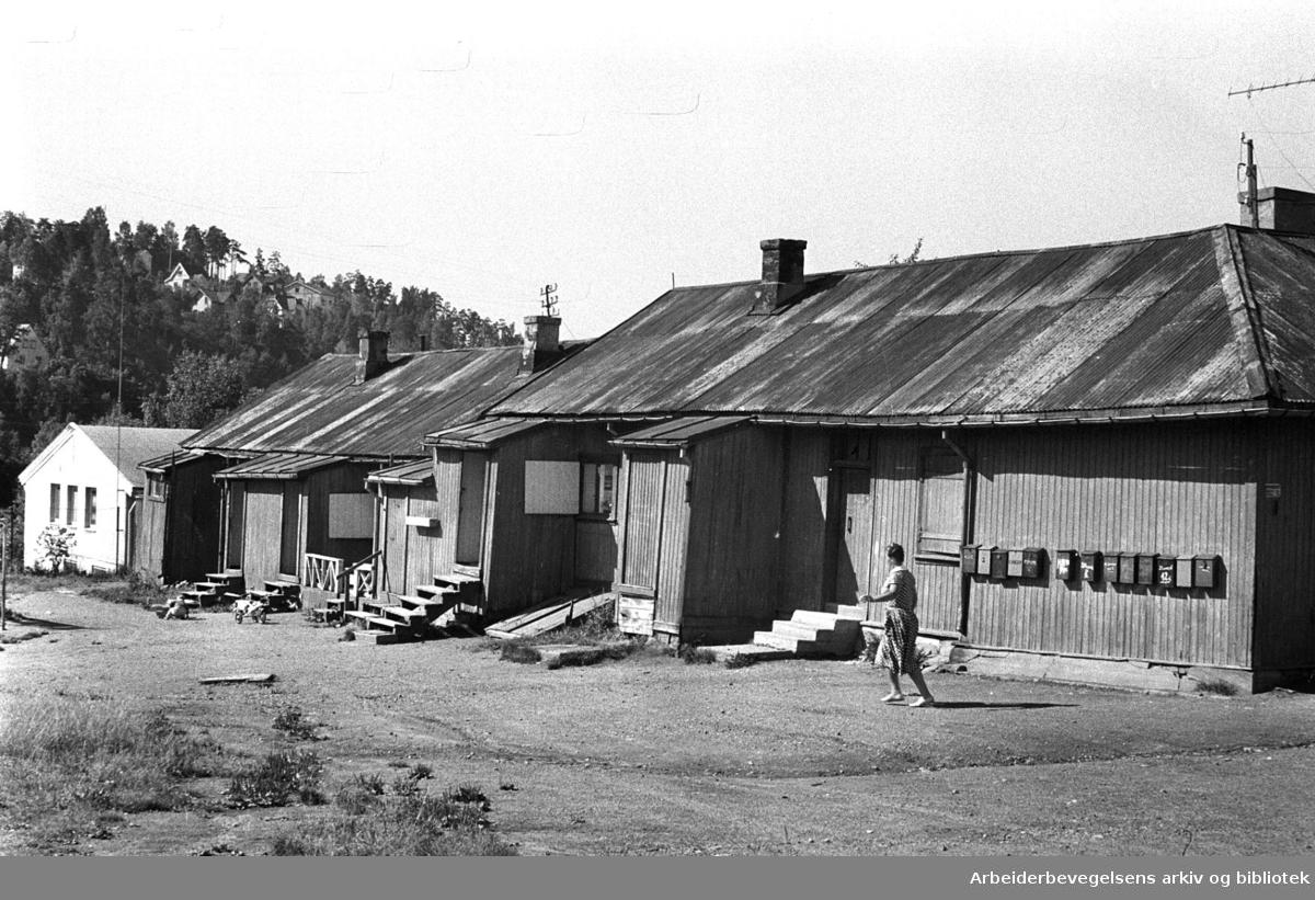 Brakker på Etterstad,.august 1961