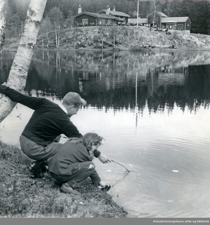 Tryvann,.1950-tallet