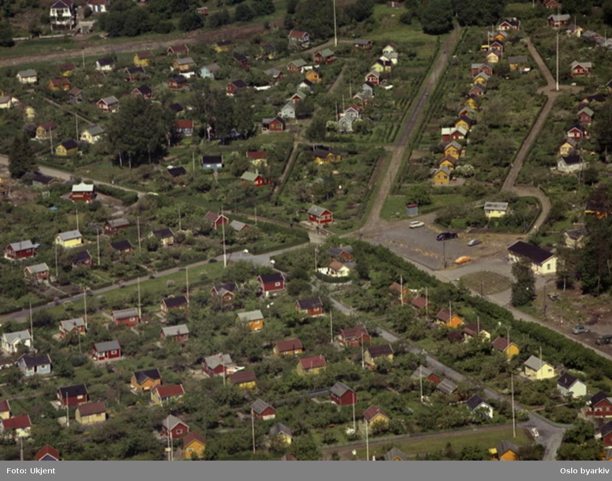 Solvang kolonihager, øvre del. Avdeling 3 nedenfor Nordbergveien og avdeling 4 ovenfor. Gult hus til høyre var matvarebutikk på 1950-tallet. (Flyfoto)