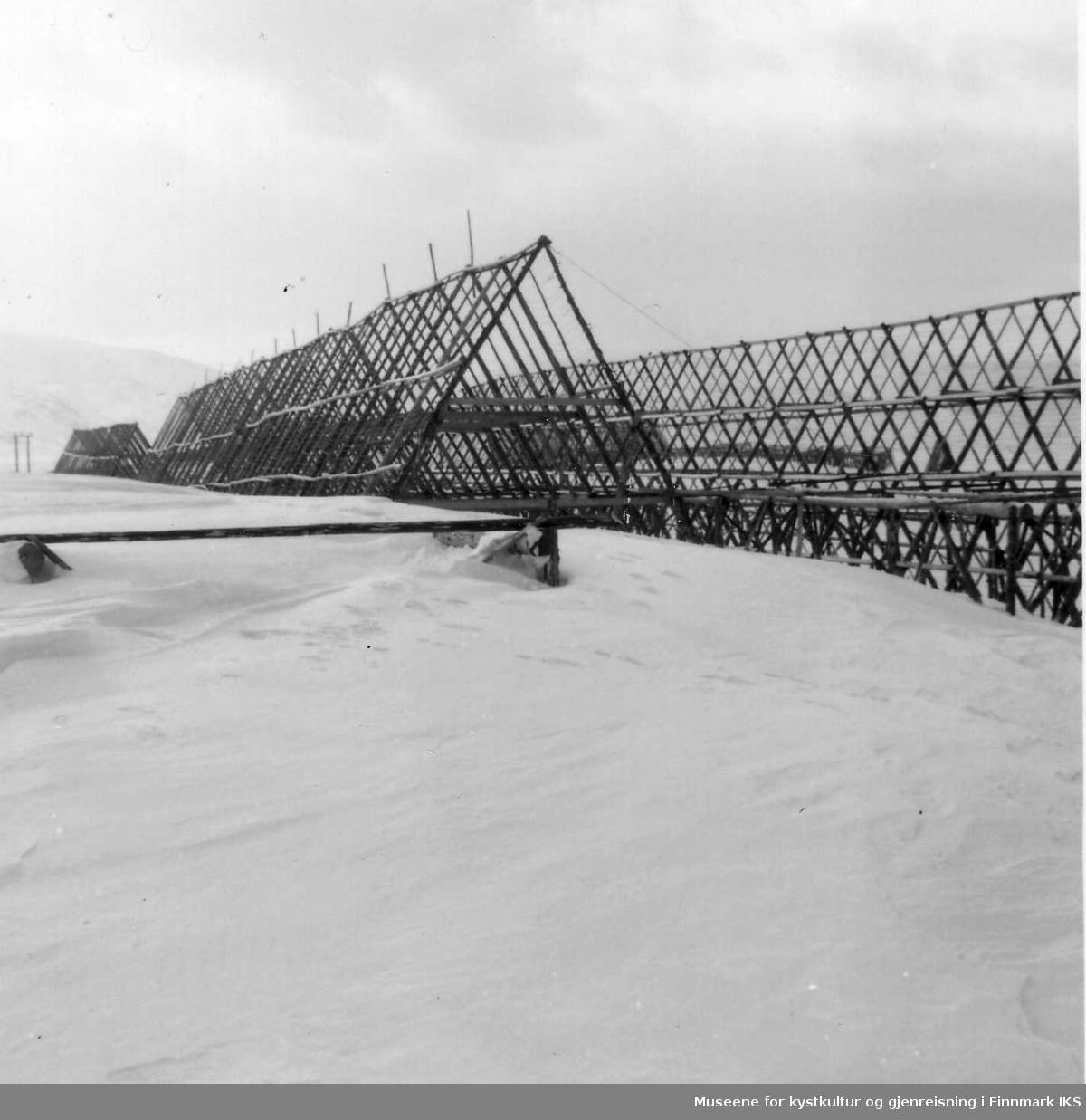 Snøforhold på Iversenraet. Edv. Fjærtofts fiskehjeller, 1952
