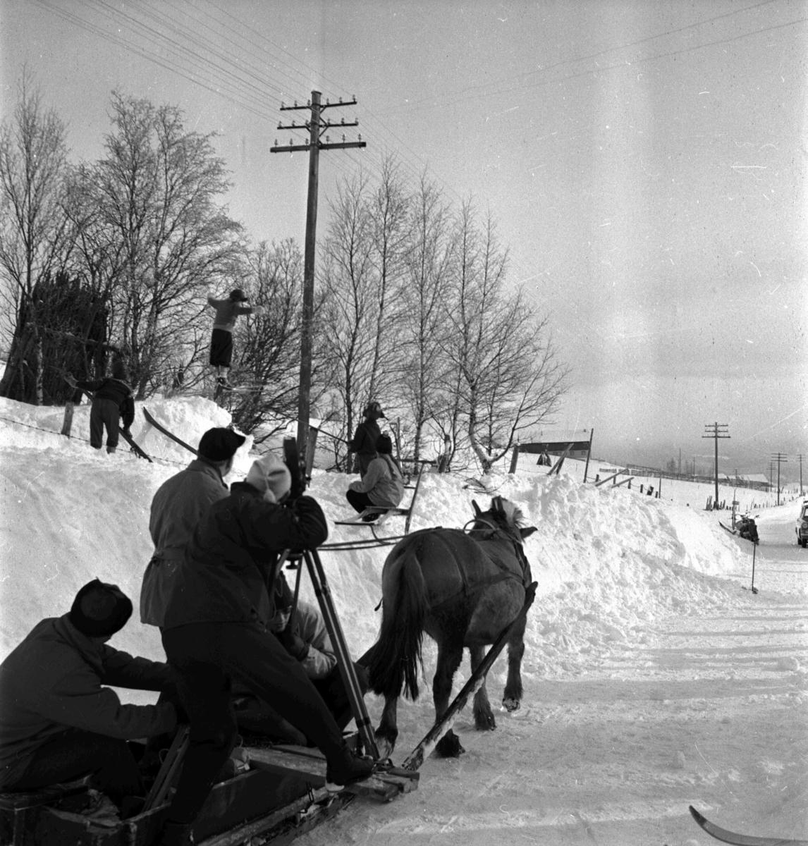 Vingelen filminnspilling av freske fraspark, skihopping, barn, hest, kamera, vinter